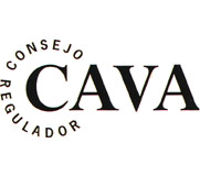 Logo of the CAVA