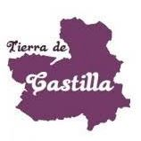 Logo of the CASTILLA